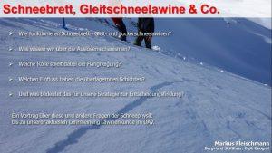 Schneebrett, Gleitschneelawine & Co.